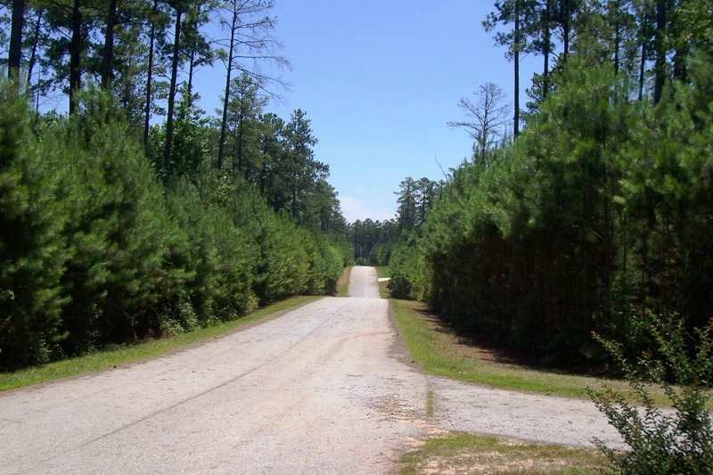 Melody Point Lot 6, Hartwell, Georgia 30643