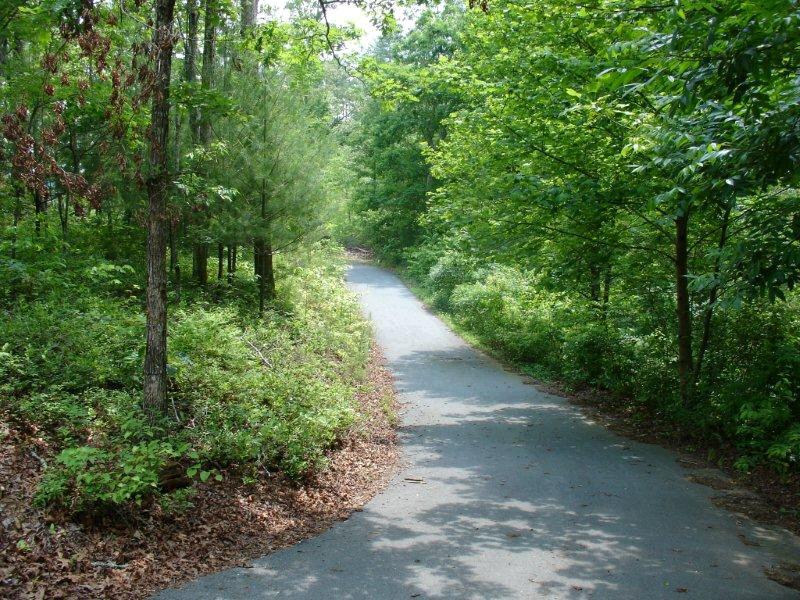 LT442 Pony Ghost Trails, Blue Ridge, GA 30513