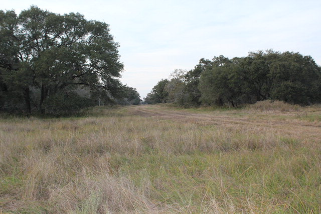 285 County Rd, Morales, TX 77957