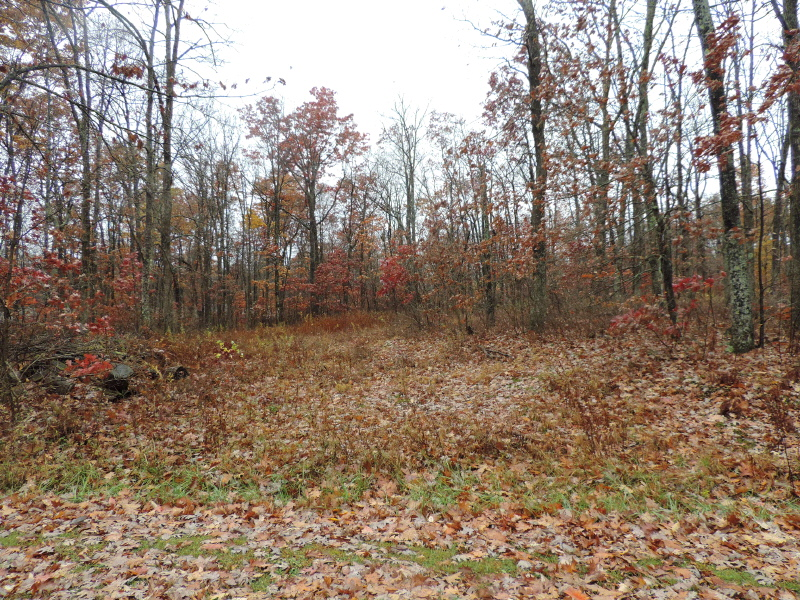Lot 6 Red Brush Road, Mchenry, MD 21541