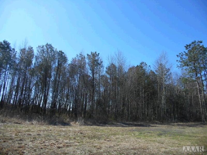 0 Caratoke Hwy, Maple, NC 27929