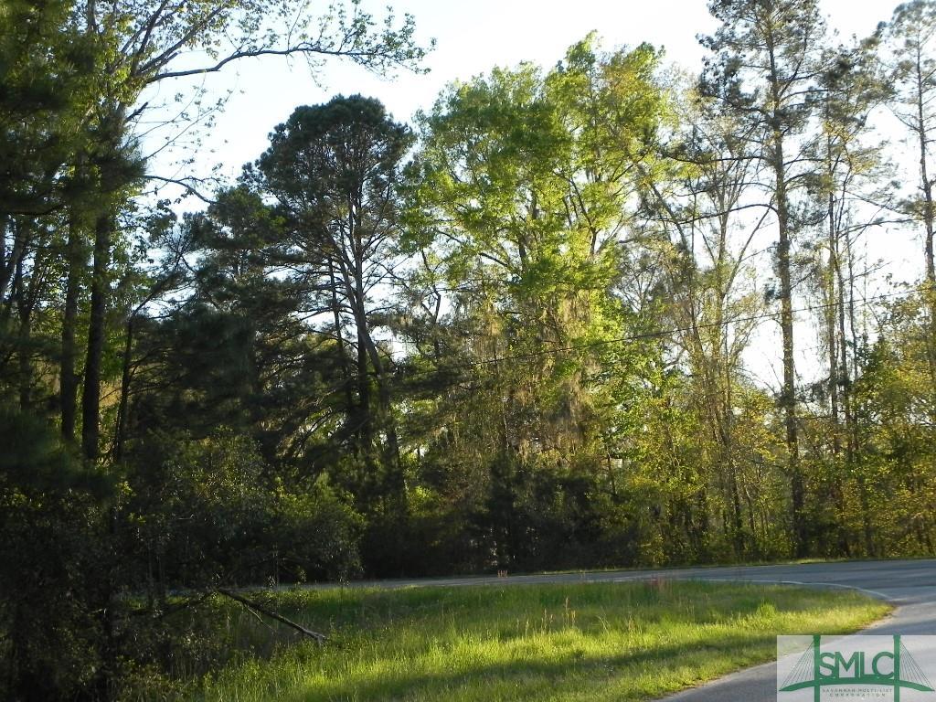 0 S Hwy 17, Riceboro, GA 31323