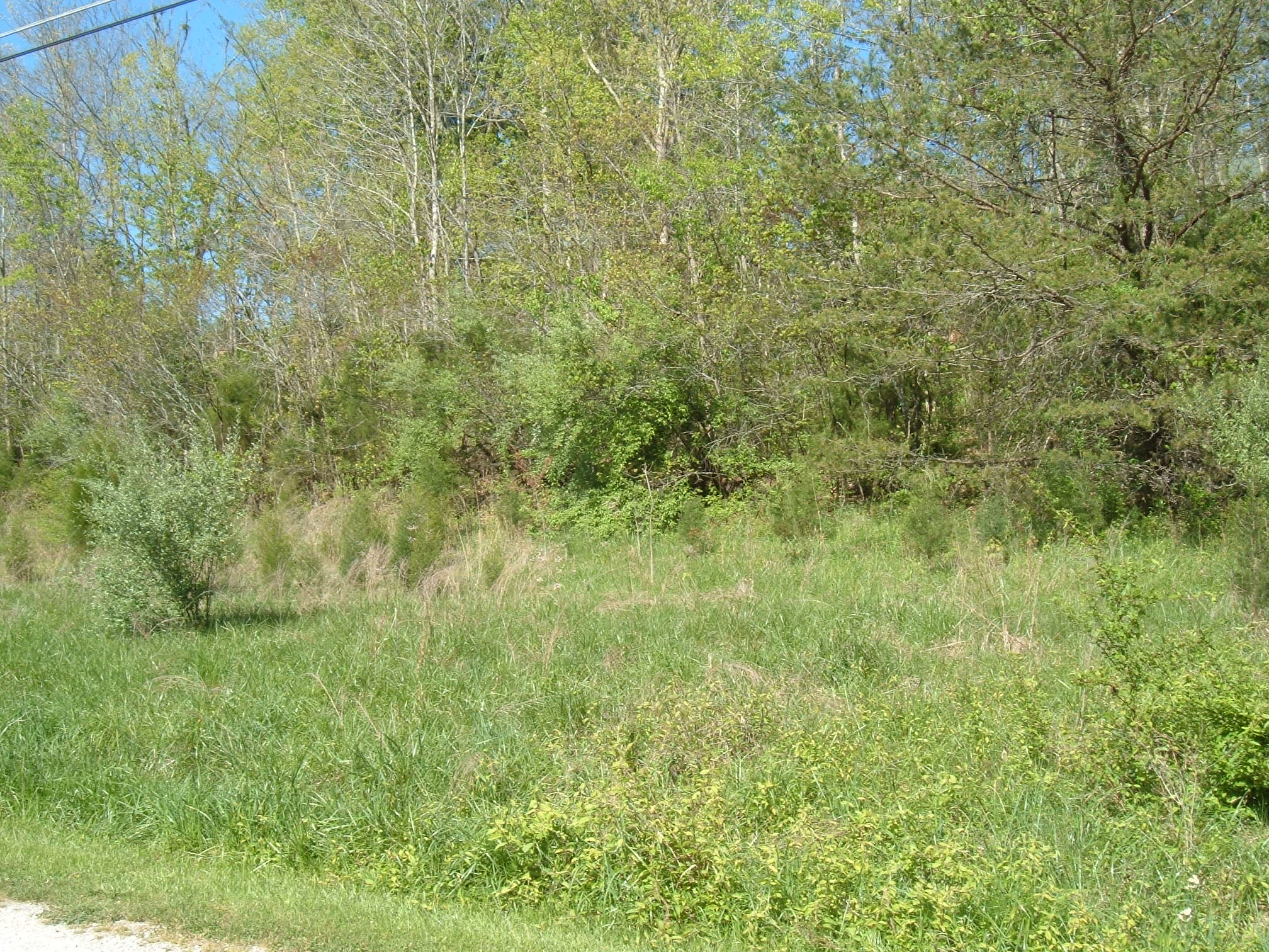 3 Lots Waters Edge Subdivision, Somerset, Kentucky 42501