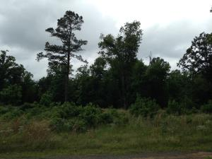Galens Rd, Batesville, AR 72501