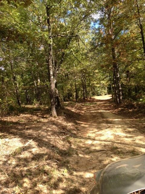 Cup Hill Road, Maben, MS 39750