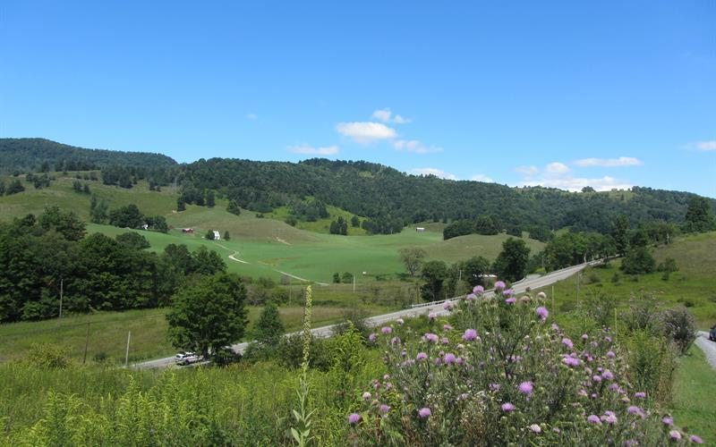 347 Old Huttonsville Turnpike, Snowshoe, WV 26209