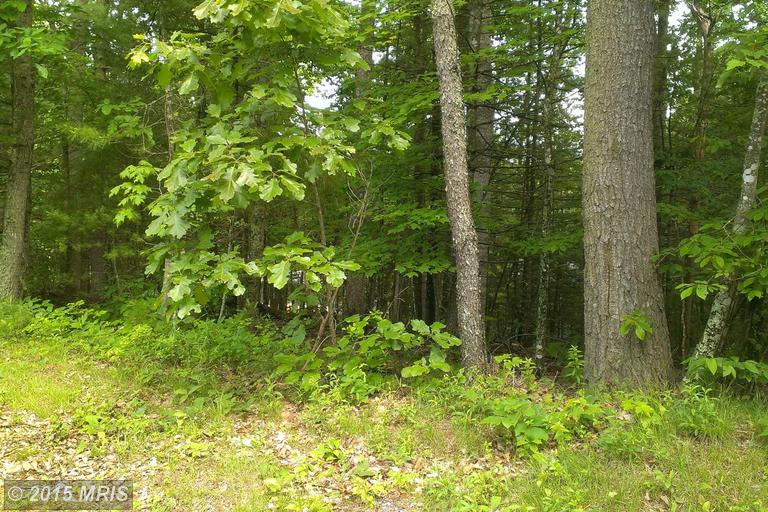 LOT 238 BASSWOOD, Mount Jackson, VA 22842