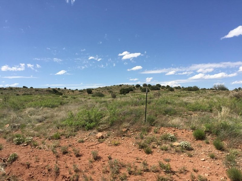 72 RIVER RANCHES Place, Fort Sumner, NM 88119