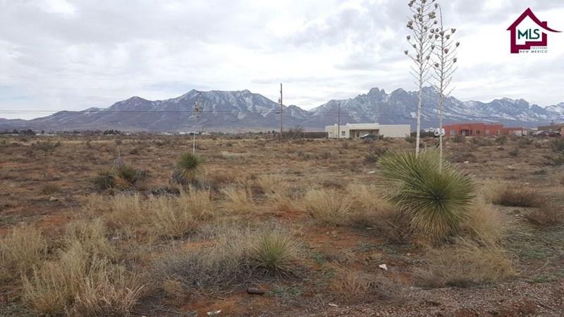 6359 WAGONS EAST TRAIL, Las Cruces, NM 88012