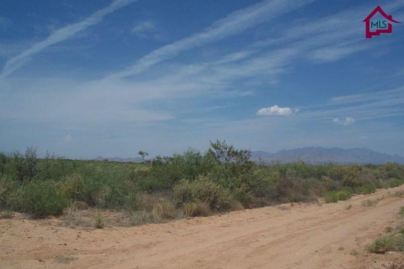 000 QUITMAN ROAD, Chaparral, NM 88081