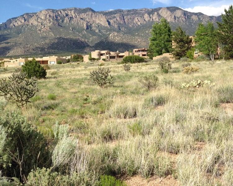 13505 PINO CANYON Place NE, Albuquerque, NM 87111