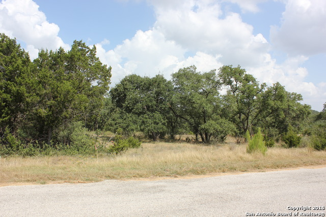 737 Panorama Pt, Canyon Lake, TX 78133