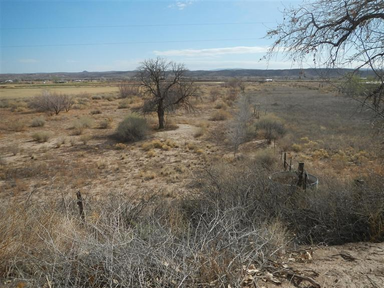 324 E of County Rd 90 - 11AC, Lemitar, NM 87823
