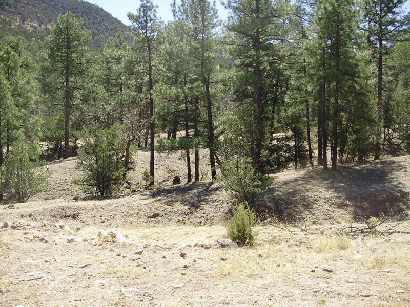 0 Forest Rd 112-Rock Canyon Ro, Magdalena, NM 87825