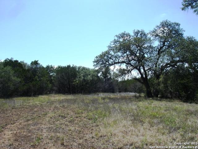 000 Panther Ridge, Pipe Creek, TX 78063