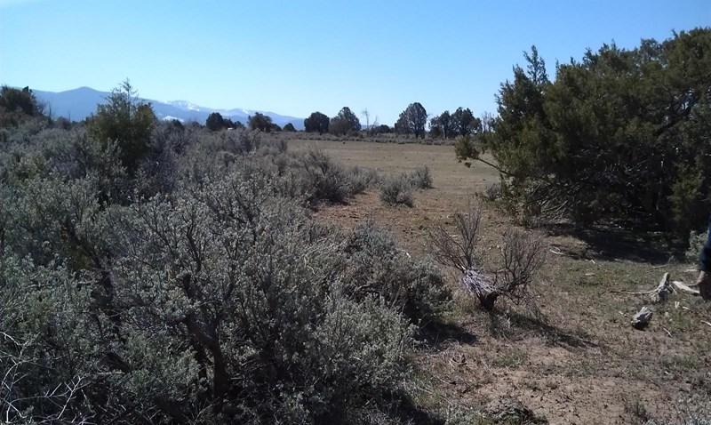 Llano Abeyta, Truchas, NM 87522