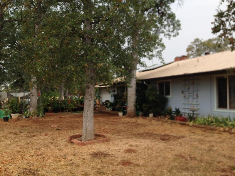 24864 State Highway 44, Millville, CA 96062
