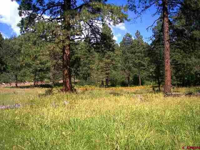tbd CR 240, Durango, CO 81301