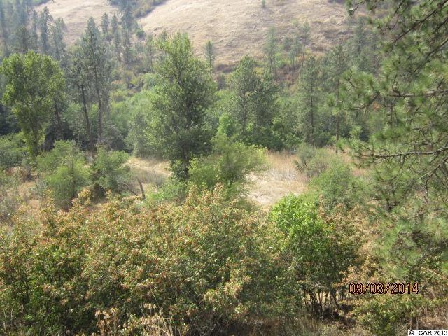 Cottonwood Creek Rd., Culdesac, Idaho 83524