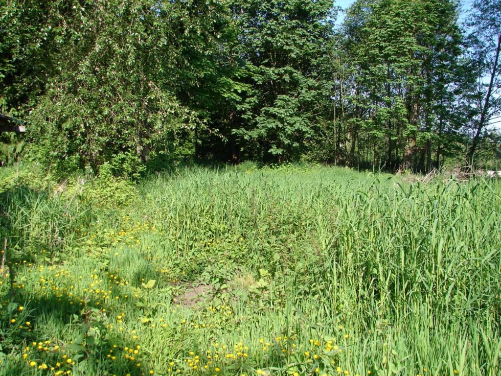 3719 W Valley Hwy N, Auburn, WA 98001