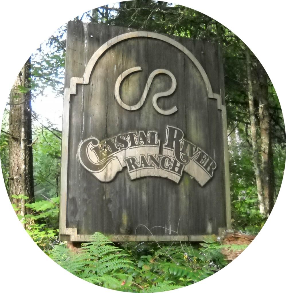 62315 Mountain Beaver Wy E, Greenwater, WA 98022