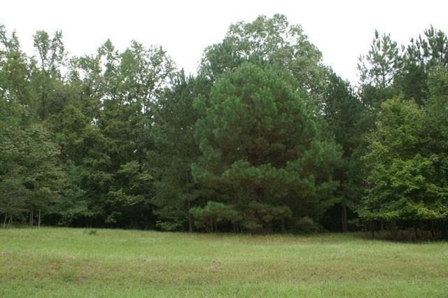 16.2 acres CANNON TRAIL, Greensboro, GA 30642