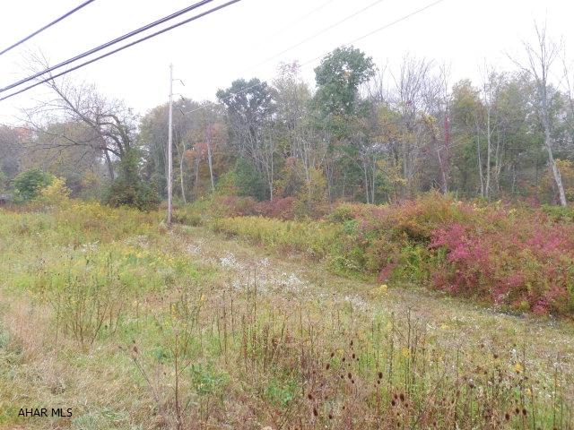 - Pinecroft Ground, Bellwood, PA 16617