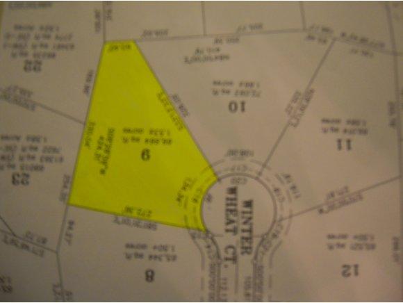 Winter Wheat Ct Lot 9, Pulaski, WI 54162