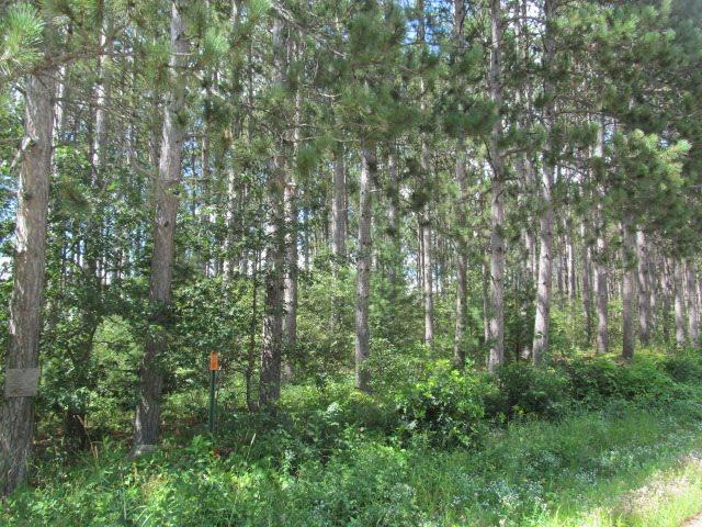 16 Acres Deer Road, Rosholt, WI 54473